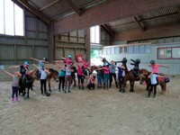 Stages poneys ludiques